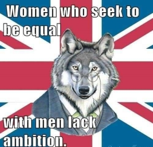 women-who-seek-to-be-equal-with-men-lack-ambition-29